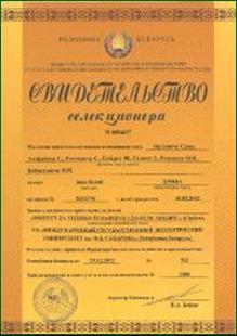 ILFE Novi Sad - Sorte Salix alba cl. Backa